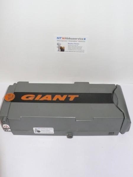 Giant Lafree 24V - 9Ah Ni-MH